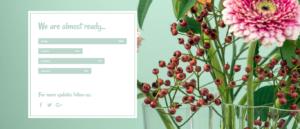 P2 – Hero Image with Progress Bar and Social Media Icons